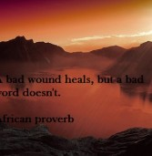 African proverb of the day 21/11/2015