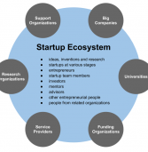 Clarifying entrepreneurship eco-system myths