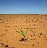 Somalia drought starves 4.7 million people