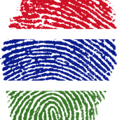 The Gambia: 8 months to elections, and repression against opposition mounting