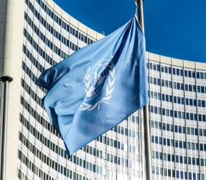 What can be done to stop the United Nations abusing its immunity