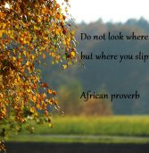 African proverb of the day 06/06/2016