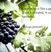 African proverb of the day 07/06/2016
