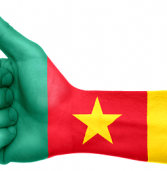 Cameroon grabs economic reforms award