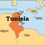 Tunisia government calls for investors
