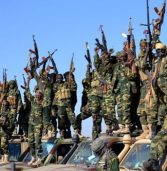 700 Boko Haram fighters surrender to Nigerian army