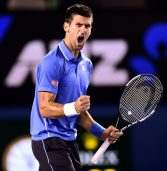 Twelve-time Grand Slam champion, Djokovic, will not play again in 2017