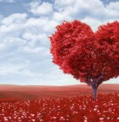 Belief realities about love