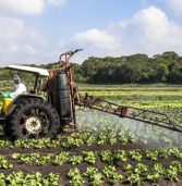 Angola seeks to diversify economy through agriculture