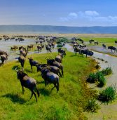 10 most visited National Parks of Africa