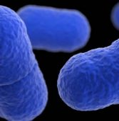 What is listeria? Signs and symptoms of Listeriosis