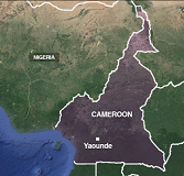 Cameroon to partake in presidential elections
