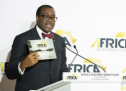 AfDB to evade Africa's finance gap amid investment drives
